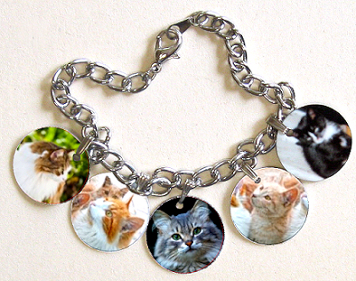 Charm bracelet with five charms