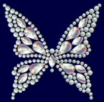 Butterfly shimmer nailhead design