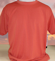 Vapor Apparel adult basic t-shirt in tera mesa