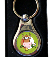 Keyring silver with presentation box (08)