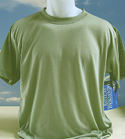 Vapor Apparel adult basic t-shirt in spruce