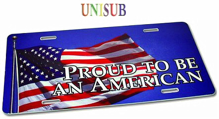 Unisub American style licence plate